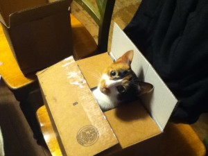 Hey Mom!  This package is ready for shipping!
